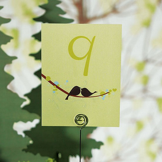Love bird table number in spring