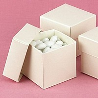 Small Shimmering Ivory Two Piece Favor Boxes