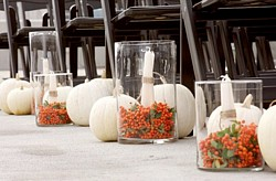 Pumpkin lined wedding aisle decorations