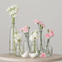 Vintage glass vase decorations in assorted sizes